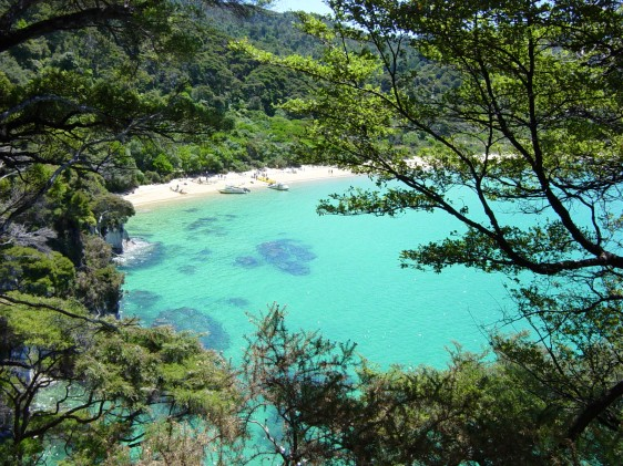 abel tasman new zealand aavtravel