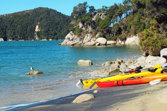 kayaking abel tasman new zealand aavtravel