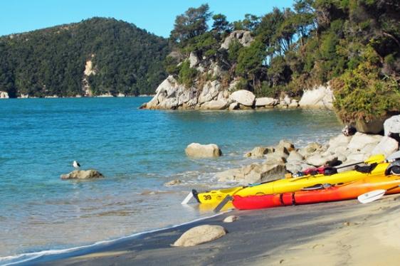 kayaking abel tasman new zealand aavtravel