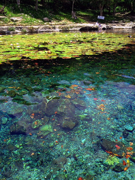 Dzibilchatun Cenote aavtravel