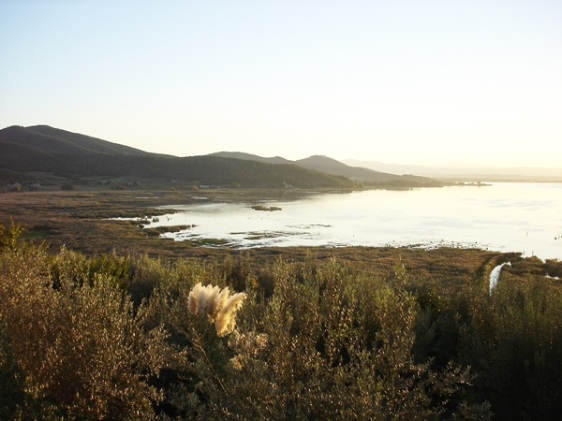 Lago Trasimeno aavtravel