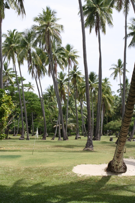 vomo fiji golf aavtravel