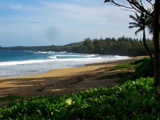maui, beach, kapalua, aavtravel