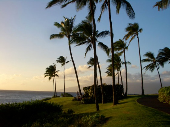 kapalua, maui, sunset, hawaii, aavtravel