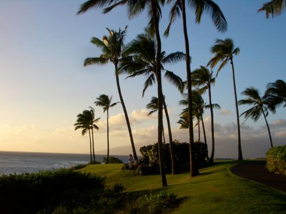 kapalua, maui, sunset, hawaii, aavtravel