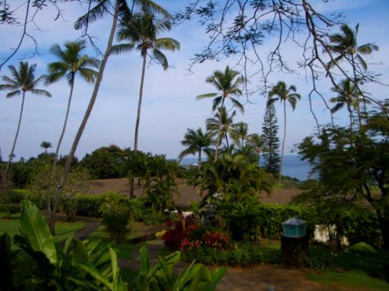 maui, hana, aavtravel, hawaii