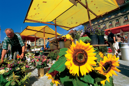 bern, market, switzerland, flowers, aavtravel