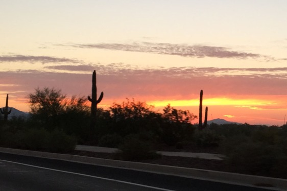 arizona, sunrise, highway 17, saguaro, aavtravel